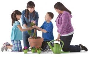 planting group adults kids e1513369151186