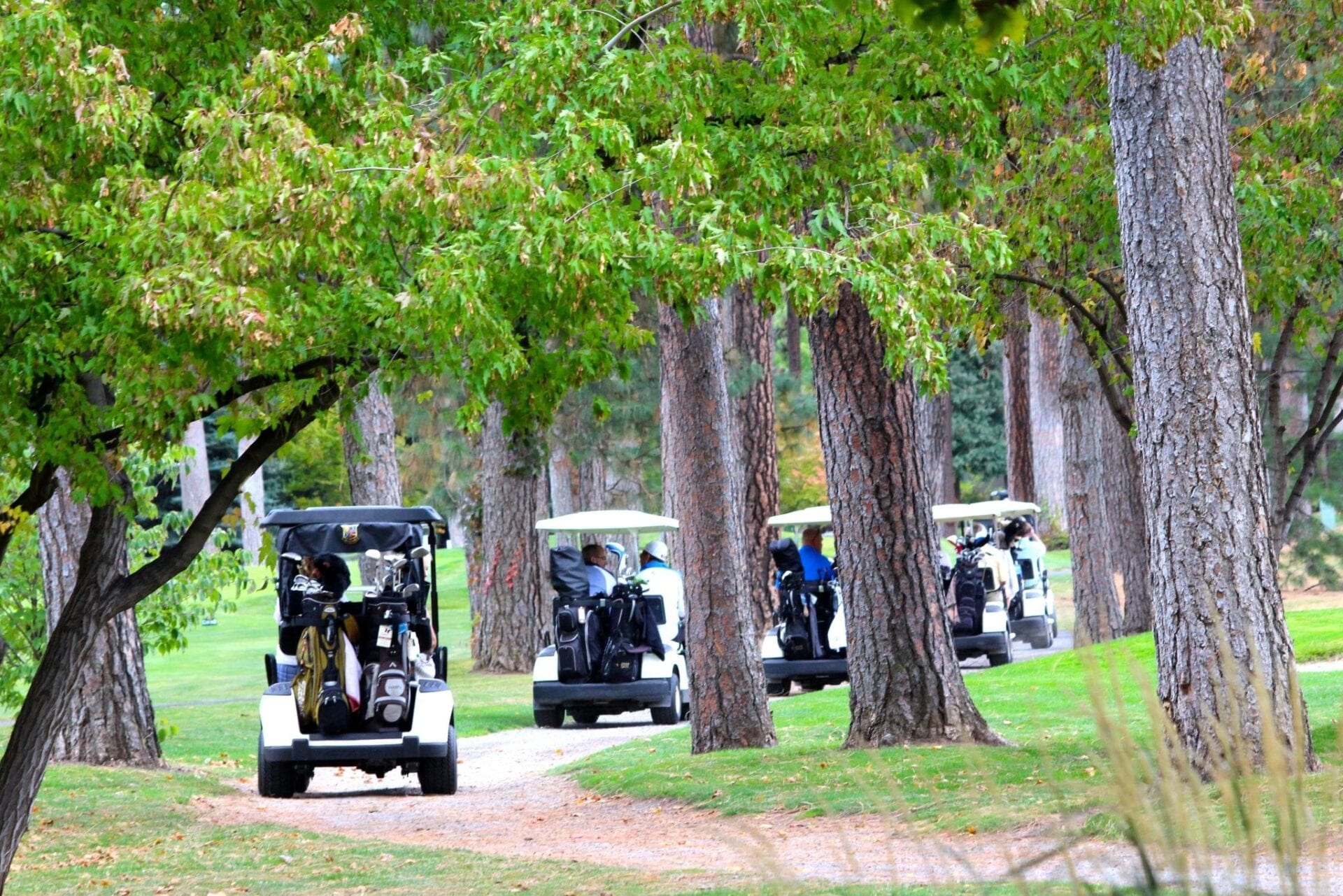Golf Carts on course